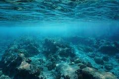 Морское дно подводной чистой воды поверхности моря скалистое стоковая фотография rf