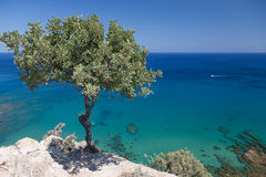 Морское побережье острова Кипра Стоковые Изображения RF