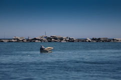 Морское рыболовство Стоковые Фото