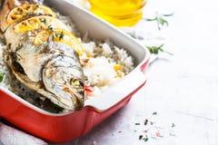 Морской волк рыб испеченный с рисом и овощами Стоковая Фотография RF