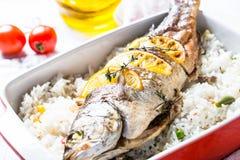 Морской волк рыб испеченный с рисом и овощами Стоковое Изображение RF