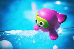 Морской котик пурпура игрушки ребенка стоковые фото
