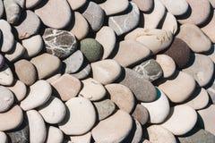 Морской пехотинец естественно округлил гравий, камешки в ряд стоковое фото