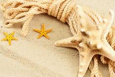 морской пехотинец жизни все еще Стоковое Фото