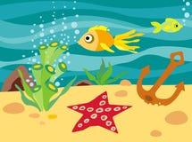 морской пехотинец жизни Стоковое фото RF