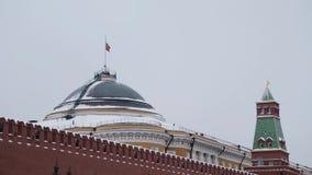Москва, Россия - декабрь 2018: Замедленное движение русского флага развевая на предпосылке серого неба сток-видео