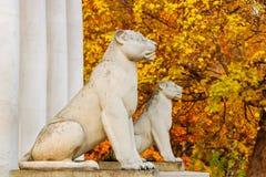 МОСКВА, РОССИЯ - 17-ОЕ ОКТЯБРЯ 2017: Скульптуры львов защищая вход к зданию в Музе-запасе Kolomenskoye Стоковые Фото