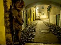 Мостите булыжником каменную улицу стоковые фотографии rf