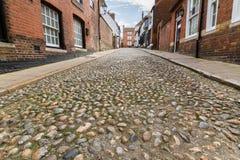 Мостит булыжником, улица льва, Rye, восточное Сассекс, Великобритания стоковые изображения