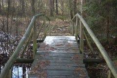 Мостк Snowy в лесе Стоковое Изображение RF