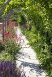 мостоваая сада с надземным вином 3 стоковое фото rf