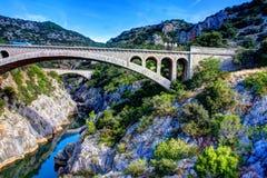 Мосты в природе Стоковая Фотография RF