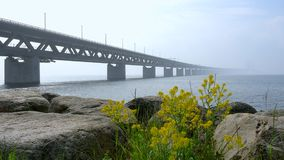 Мост Öresund между Копенгагеном и Malmö, Швецией, Европой акции видеоматериалы
