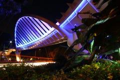 Мост Александры Стоковая Фотография