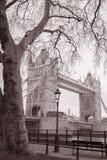 Мост башни в Лондоне, Англии, Великобритании Стоковое Изображение