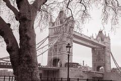 Мост башни в Лондоне, Англии, Великобритании Стоковые Фото