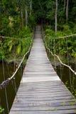 Мост веревочки Стоковое Фото