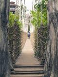 Мост веревочки Стоковые Фотографии RF