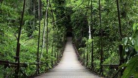 Мост веревочки Стоковая Фотография RF