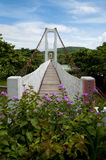 Мост в национальном парке Kenting Стоковая Фотография RF