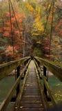Мост в осень стоковое фото