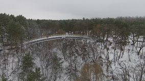 Мост в парке в зиме, aero сток-видео