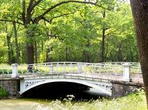 Мост в парке Павловска Стоковые Фото
