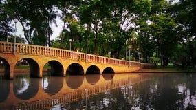 Мост в парке стоковая фотография