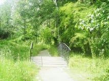 Мост в парке Стоковое Изображение
