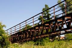 Мост в пуще Стоковое Фото