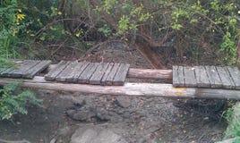 Мост в древесинах Стоковая Фотография RF