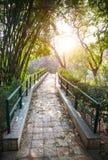 Мост в саде стоковое фото rf