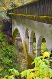 Мост в ущелье Колумбии! Стоковое Изображение