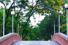 Мост в цветочном саде стоковое фото rf