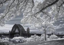 Мост гавани в инфракрасном Стоковое Фото
