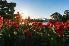 Мост гавани Сиднея на заходе солнца Стоковая Фотография RF