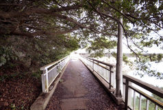 Мост где никто Стоковая Фотография