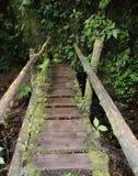 мост деревенский Стоковая Фотография