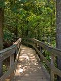 мост деревянный Стоковые Изображения RF