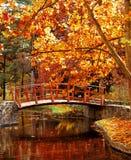 мост деревянный Стоковые Фото
