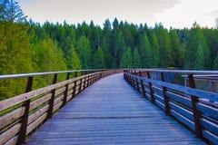 Мост железной дороги козл Kinsol в острове ванкувер, ДО РОЖДЕСТВА ХРИСТОВА Канаде Стоковые Изображения RF
