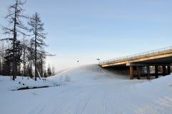 Мост зимы над морозным и снежным рекой Стоковое фото RF