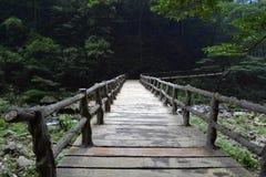 Мост и веревочка вокруг парка отстают в живописной местности Wulingyuan Стоковая Фотография RF