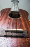 Мост и строки гавайской гитары Стоковая Фотография