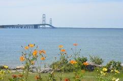 Мост и цветки Mackinaw Стоковые Изображения RF