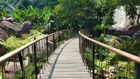 Мост канала в фото предпосылки парка Стоковые Фото
