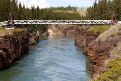 Мост качания через каньон миль Рекы Юкон Стоковые Изображения RF