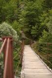 Мост качания Стоковая Фотография