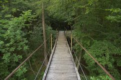 Мост качания Стоковое фото RF