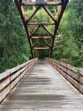 Мост к глуши Стоковые Изображения RF